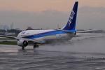 ベリオさんが、伊丹空港で撮影した全日空 737-881の航空フォト(写真)