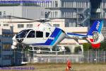Chofu Spotter Ariaさんが、東京ヘリポートで撮影したオールニッポンヘリコプター EC135T2の航空フォト(写真)