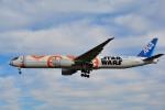 さくらの城南山。さんが、成田国際空港で撮影した全日空 777-381/ERの航空フォト(写真)