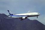 Yossy96さんが、啓徳空港で撮影した全日空 777-281の航空フォト(写真)