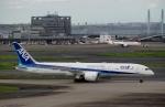 ハピネスさんが、羽田空港で撮影した全日空 787-9の航空フォト(飛行機 写真・画像)