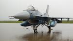 nemonさんが、横田基地で撮影した航空自衛隊 F-2Aの航空フォト(写真)