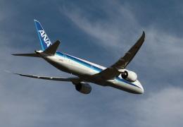 ころちゃんさんが、福岡空港で撮影した全日空 787-9の航空フォト(飛行機 写真・画像)
