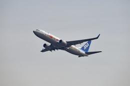 tsubasa0624さんが、羽田空港で撮影した全日空 737-881の航空フォト(飛行機 写真・画像)