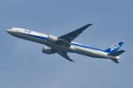 tsubasa0624さんが、羽田空港で撮影した全日空 777-381/ERの航空フォト(写真)