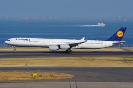 航空フォト:D-AIHQ ルフトハンザドイツ航空 A340-600