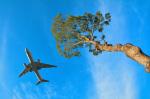 パンダさんが、成田国際空港で撮影したアメリカン航空 777-223/ERの航空フォト(写真)
