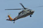 うめやしきさんが、厚木飛行場で撮影したアメリカ海軍 S-70 (H-60 Black Hawk/Seahawk)の航空フォト(飛行機 写真・画像)