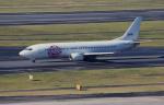 kumagorouさんが、羽田空港で撮影したスカイネットアジア航空 737-4H6の航空フォト(写真)