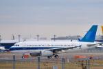 パンダさんが、成田国際空港で撮影したユナイテッド航空 A319-132の航空フォト(写真)