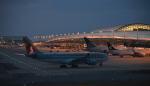 toyoquitoさんが、関西国際空港で撮影したカタール航空 A330-202の航空フォト(写真)