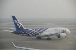 JA8037さんが、上海浦東国際空港で撮影した全日空 787-8 Dreamlinerの航空フォト(写真)
