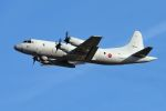 うめやしきさんが、厚木飛行場で撮影した海上自衛隊 OP-3Cの航空フォト(飛行機 写真・画像)