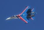 TAOTAOさんが、珠海金湾空港で撮影したロシア空軍 Su-27の航空フォト(飛行機 写真・画像)