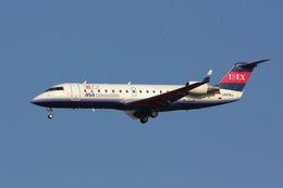 PINK_TEAM78さんが、成田国際空港で撮影したアイベックスエアラインズ CL-600-2B19 Regional Jet CRJ-100LRの航空フォト(写真)