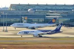 timeさんが、羽田空港で撮影した全日空 787-8 Dreamlinerの航空フォト(飛行機 写真・画像)