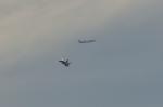 NFファンさんが、厚木飛行場で撮影した全日空 777-281の航空フォト(飛行機 写真・画像)