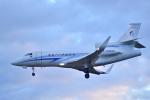 パンダさんが、成田国際空港で撮影したガスプロムアビア Falcon 900LXの航空フォト(写真)