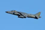 うめやしきさんが、厚木飛行場で撮影したアメリカ海兵隊 AV-8B Harrier II+の航空フォト(写真)