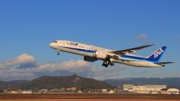 KCZfunさんが、高知空港で撮影した全日空 787-9の航空フォト(飛行機 写真・画像)