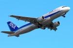 Tomo_lgmさんが、大分空港で撮影した全日空 A320-211の航空フォト(写真)