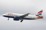 りんたろうさんが、フランクフルト国際空港で撮影したブリティッシュ・エアウェイズ A319-131の航空フォト(写真)