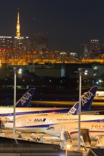たーぼーさんが、羽田空港で撮影したロシア航空 Il-96-300の航空フォト(写真)