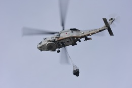 masatakaさんが、鹿屋航空基地で撮影した海上自衛隊 SH-60Kの航空フォト(飛行機 写真・画像)