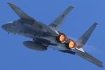take_2014さんが、岐阜基地で撮影した航空自衛隊 F-15DJ Eagleの航空フォト(写真)