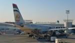 Juliaさんが、アブダビ国際空港で撮影したエティハド航空 A330-243の航空フォト(写真)