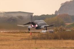ヶローさんが、岐阜基地で撮影した航空自衛隊 F-4EJ Phantom IIの航空フォト(写真)