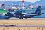 サボリーマンさんが、名古屋飛行場で撮影した航空自衛隊 C-130H Herculesの航空フォト(飛行機 写真・画像)