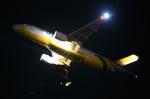 かぷちーのさんが、関西国際空港で撮影したセブパシフィック航空 A320-214の航空フォト(写真)