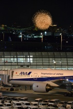 hirokongさんが、羽田空港で撮影した全日空 777-281の航空フォト(写真)
