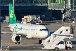 パンダさんが、羽田空港で撮影した春秋航空 A320-214の航空フォト(写真)