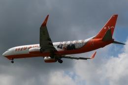 じゃがさんが、成田国際空港で撮影したチェジュ航空 737-82Rの航空フォト(飛行機 写真・画像)