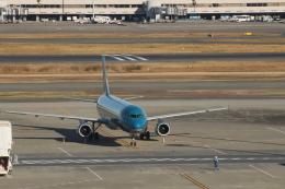 ジャンクさんが、羽田空港で撮影したベトナム航空 A321-231の航空フォト(飛行機 写真・画像)