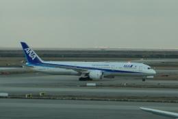 masa634さんが、上海浦東国際空港で撮影した全日空 787-9の航空フォト(飛行機 写真・画像)