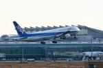 リーペアさんが、羽田空港で撮影した全日空 767-381の航空フォト(飛行機 写真・画像)