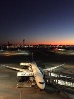 ヨッちゃんさんが、羽田空港で撮影した全日空 787-9の航空フォト(飛行機 写真・画像)