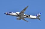sonnyさんが、羽田空港で撮影した全日空 787-9の航空フォト(写真)