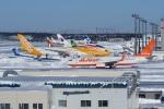 Gouei Changeさんが、新千歳空港で撮影したチェジュ航空 737-8ASの航空フォト(写真)