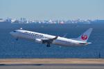 パンダさんが、羽田空港で撮影した日本航空 737-846の航空フォト(写真)