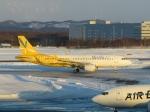 さとうさんが、新千歳空港で撮影したバニラエア A320-214の航空フォト(写真)