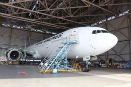 鶴の旅人さんが、羽田空港で撮影した日本航空 777-346の航空フォト(飛行機 写真・画像)