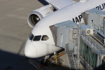 photoclub0506jalさんが、羽田空港で撮影した日本航空 787-8 Dreamlinerの航空フォト(写真)
