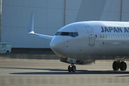 鶴の旅人さんが、羽田空港で撮影した日本航空 737-846の航空フォト(飛行機 写真・画像)