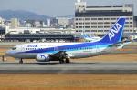 セブンさんが、伊丹空港で撮影したANAウイングス 737-54Kの航空フォト(飛行機 写真・画像)