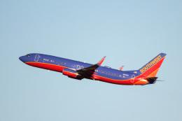 天空の鳩さんが、ルイビル国際空港で撮影したサウスウェスト航空 737-8H4の航空フォト(飛行機 写真・画像)
