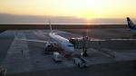 コバトンさんが、大分空港で撮影した日本航空 737-846の航空フォト(飛行機 写真・画像)